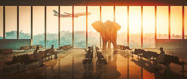 soñar con aeropuerto misabueso
