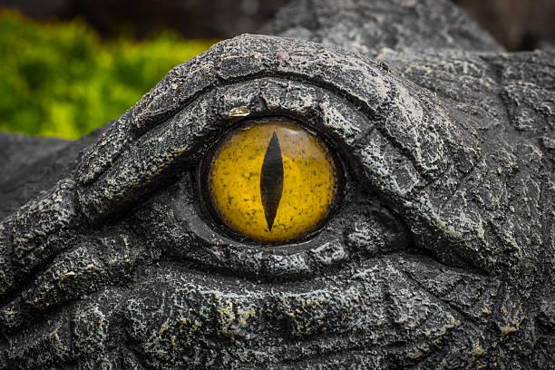 soñar con cocodrilos y serpientes