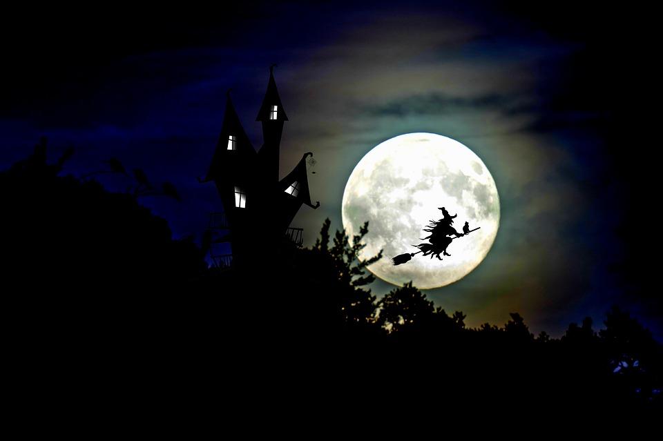 soñar con brujas y gatos
