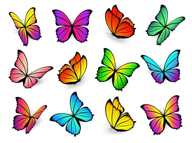 soñar con mariposas grandes