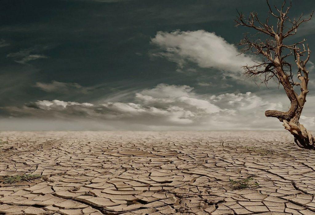 soñar con tierra humeda
