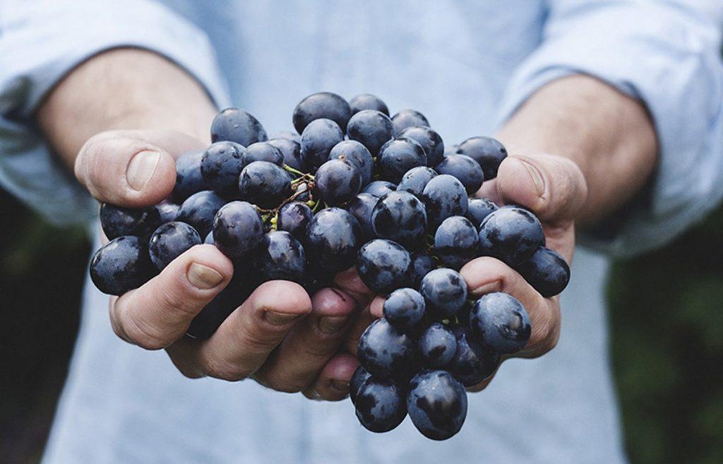soñar con uvas dulces