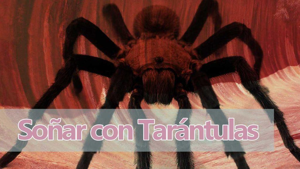 soñar con tarantulas que significa