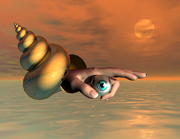 soñar con caracoles de mar
