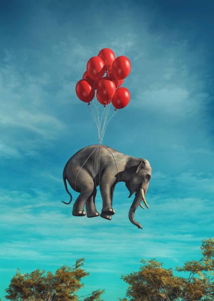 soñar con elefantes pequeños
