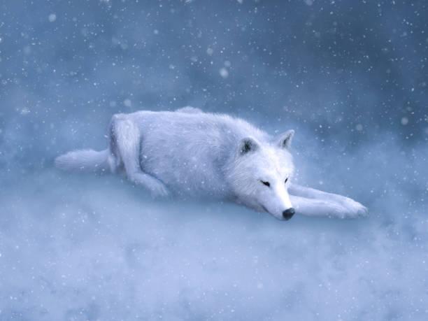 soñar con lobos asesinos