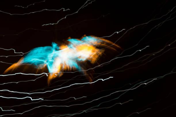 soñar con murcielagos pequeños