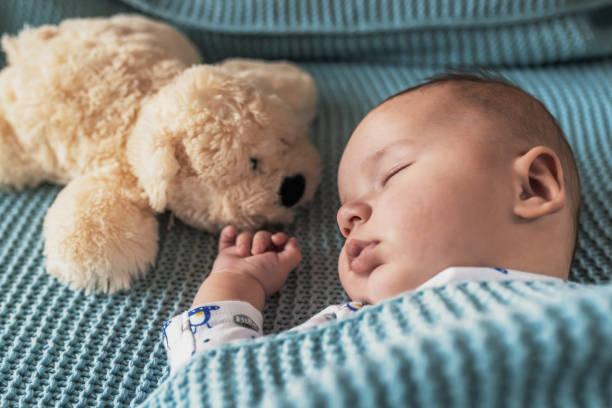 soñar con osos bebes