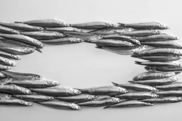 soñar con peces en agua sucia