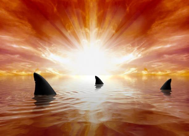 soñar con tiburones alrededor