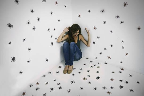 soñar con arañas en el cuerpo
