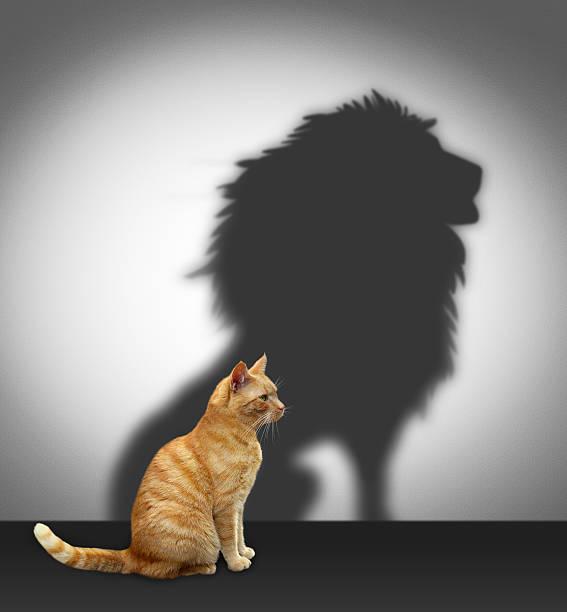 soñar con leones flacos