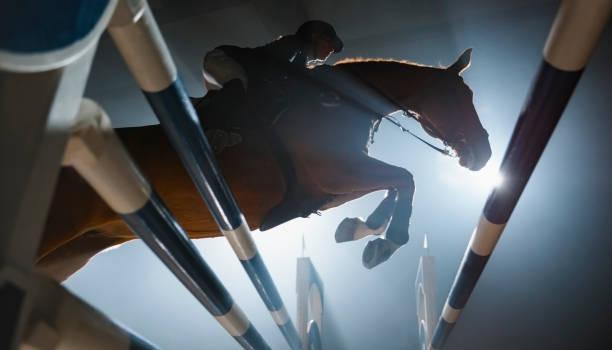 soñar con caballos bravos